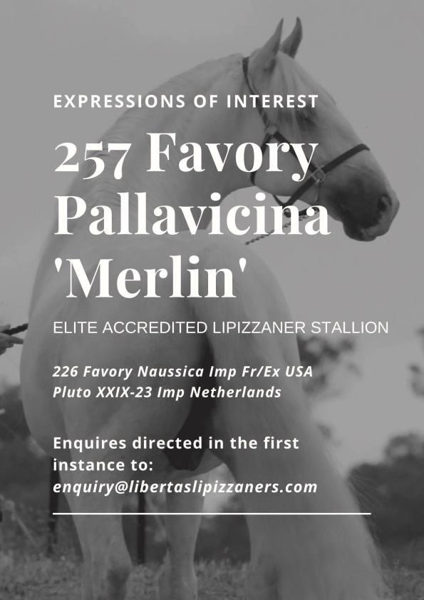 257 F Pallavicina sale ad